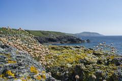 Porth Iago Gwynedd 4 (Jimmy Davies) Tags: wales cymru gwynedd snowdonia harbour summer coast beach landscape