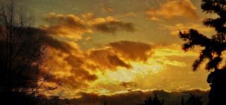GERMANY, Abendhimmel vom Garten aus, 76366/10318