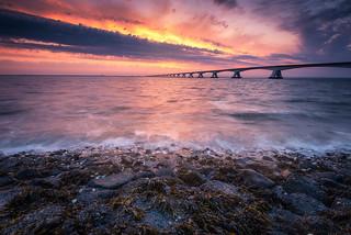 The Zeelandbridge at sunset