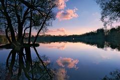 Abend am See (MHikeBike) Tags: see landschaft abend sonnenuntergang sunset farbig himmel wasser boote büsche wald rheinebene rhein lake landscape eve coloured sky water boats shrubbery forest rhine