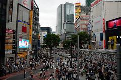 Crowds of the city (varnaboy) Tags: tokyo japan japanese city urban people crowds road street building skyscraper tree