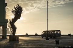 Sculpture at Malecon, Havana, Cuba (kuhnmi) Tags: sunset sculpture esculturaaprimavera malecon havana havanna kuba cuba bus car autobus schoolbus schulbus gegenlicht silhouette skulptur sonnenuntergang evening abend eveningsun sightseeing street road abendsonne