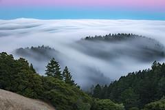 Reasons Why (dsafanda) Tags: mttamalpais mttam fog marin