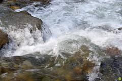 The speed of water (petrOlly) Tags: europe europa slovensko slowakei slovakia słowacja sk2018 nature natura przyroda water river demänovskácaveofliberty demänovskájaskyňaslobody demänovskávalley