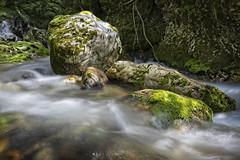 Whitewater (memories-in-motion) Tags: wild whitewater wildwasser natur nature flow green sun light sunlight moss stones rock slovenien slovenia soca lepena canon slo canoneos5dmarkiv