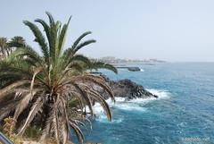Playa de las Américas, Тенеріфе, Канарські острови  InterNetri  825