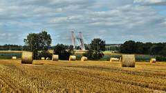 Bridge into the unknown (Szymon Simon Karkowski) Tags: outdoor field hay stubble agriculture sky cloud tree bridge hihroad a4 landscape silesia voivodeship gliwice canon eos 1200d