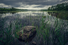 A dark day in Sweden (A.Dissing) Tags: white black art light dark contrast a7 a7ii a7m2 sony anders dissing masterpiece super detail fantastic good positive photo pixel mm creative beautiful color composition moment europe artistic other danish denmark danmark different exposure enjoy young unique weather scene awesome dope angle perfect perspective interesting flickr sweden forest dramatic stone water
