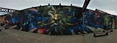 Stan STS / arbedpark - 16 jun 2018 (Ferdinand 'Ferre' Feys) Tags: gent ghent gand belgium belgique belgië streetart artdelarue graffitiart graffiti graff urbanart urbanarte arteurbano ferdinandfeys stanz sts jasta jastacrew