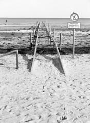 Afpillet (holtelars) Tags: pentax 645 pentax645 645n 6x45 smcpentaxfa 4585mm f45 120 film 120film foma fomapan fomapan100 fomapan100professional 100iso mediumformat analog analogue blackandwhite classicblackwhite bw monochrome filmforever ishootfilm filmphotography xtol homeprocessing larsholte beach seascape denmark danmark nivå nivåstrand