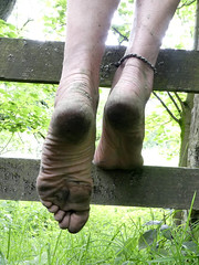 Fence climb (Barefoot Adventurer) Tags: barefoot barefooting barefoothiking barefooter barefeet barefooted baresoles barfuss blacksoles roughsoles ruggedsoles hiking happyfeet hardsoles heelcracks anklet toughsoles toes texture tough connected callousedsoles naturalsoles naturallytough wrinkledsoles footmassage arches earthsoles earthing earthstainedsoles energy