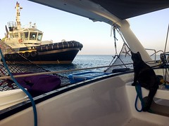 """Tug waiting for cruise ship. Quite nearby. (miaow) Tags: bellalunaboat abcmyphoto exploring liveaboard offgrid winter2018 adventure """"newcaledonia"""" sailing tugboat boatcat"""