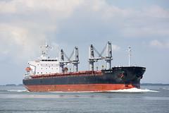 GALENE M (angelo vlassenrood) Tags: ship vessel nederland netherlands photo shoot shot photoshot picture westerschelde boot schip canon angelo walsoorden cargo bulker galenem