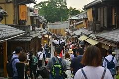 DSC_0051 (sxcxxhx) Tags: japan osaka kyoto hydrangea flower trip voyage 日本 大阪 京都 旅行