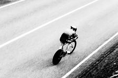 DSC06364 (Guðmundur Róbert) Tags: time trial tt iceland icelandic cycling biking road bike bikes reiðhjól bjartur hjól sony a7ii 14mm 2870mm black white sun down water aero uphill