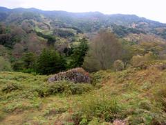 Paisaje con roca/ Landscape with a rock (vantcj1) Tags: potrero campo rural vegetación montaña colina pendiente ladera roca piedra caminata