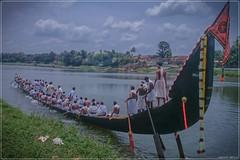 DSC_1774 (|| Nellickal Palliyodam ||) Tags: nellickal palliyodam aranmula snake boat race jalamela pathanamthitta kannadi tradition kerala