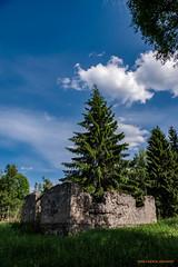 fd.finngård (MIKAEL82KARLSSON) Tags: explore explorer expo abandoned decay övergivet old öde övergiven ödehus ruin finnmarken natur naturbild nature himmel sky skog forrest förfallet sverige sweden dalarna pentax k70 1650mm f28 mikael82karlsson