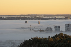 Through the fog (gaabNZ) Tags: fog panoramic sunrise auckland newzealand sony sonycamera sonya7mkiii colour sunshine weather