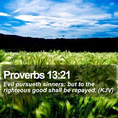 Daily Bible Verse - Proverbs 13:21 (daily-bible-verse) Tags: meditation thankful words motivate light goodnews quoteoftheday