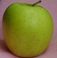 DSC00691 (@PHOTODUNKERQUE) Tags: fruits couleur color filtre filer effet effect pomme apple orange kiwi