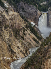 Beauty at its Best (moelynphotos) Tags: grandcanyonoftheyellowstone waterfall yellowstonenationalpark nature multicolored tree flowingwater yellowstoneriver nopeople moelynphotos wyoming