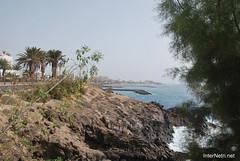 Playa de las Américas, Тенеріфе, Канарські острови  InterNetri  830