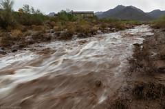 Flash Flood (Tom_Morris Photos) Tags: monsoon scottsdale az arizona mcdowellmountains
