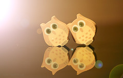...we do the Hokey Cokey (Elisafox22 catching up again ;o)) Tags: elisafox22 sony nex7 50mmf28 macro carlzeiss lens touitmakroplanar hmm erasers macromondays owls two hokeycokey reflections lensflare tabletop indoors elisaliddell©2018