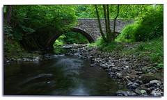 DSC_0687 - Ury (Marc Gordon'74) Tags: deeside stonehaven bridge river country aberdeenshire green