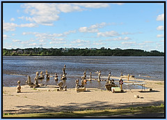 Ottawa River Rock Balance Art (bigbrowneyez) Tags: rocks statues sky clouds trees quebec gatineauquebec cielo nuvole beautiful creative amazing outstanding artful special bellissimo bello fantastic fabulous lovely ottawaontario canada unique aqua fiume ottawariverrockbalanceart fantabulous inspiring talent john friend awesome expressive ottawariver remicrapids birds buildings seagulls magical precious