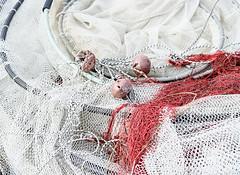 trasimeno_reti_17 (Marco Tuteri) Tags: reti pesca trasimeno lago perugia