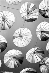 L4990125 (RG-Photographie) Tags: gap france alpes hautesalpes monochrom leica m4 rokkor 40mm minolta umbrella parapluie alps rollei retro 80s iso80 film argentique analog