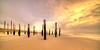 Static pillars. (Alex-de-Haas) Tags: 11mm adobe d850 dutch hdr holland irix lightroom nederland nederlands netherlands nikon noordholland noordzee northsea petten pettenaanzee photomatix photomatixpro beach beachscape exposure hemel landscape landschap longexposure lucht palen pillars poles sand sea skies sky steunpijler steunpijlers steunpilaar steunpilaren strand sundown sunset supportpillars wind winter zand zee zonsondergang