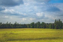 IMG_8517 (Ali Sabbagh) Tags: versailles france travel landscape world green wallpaper eos7d canon colors nature forest horizon sky clouds sight photography postcard