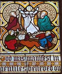 Stamford - St John the Baptist Church - Stained Glass (Glass Angel) Tags: stamford lincolnshire stjohnthebaptistchurch stainedglass franciswilsonoliphant nativity transfiguration churchesconservationtrust