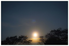 Sun (inongperjuangan) Tags: sun photography photo sky light beautiful indonesia
