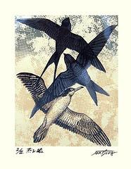 Barn swallow, Asian martin and gull (Japanese Flower and Bird Art) Tags: bird barn swallow hirundo rustica hirundinidae asian martin delichon dasypus gull lardidae masao matsuda screenprint print japan japanese art readercollection