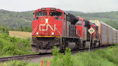 CN 305 by Baker Brook (MaineTrainChaser) Tags: quebec west westbound cn 305 trains train