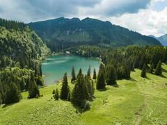 Lac des Chavonnes - Suisse (Alexis Rangaux) Tags: lac lake suisse landscape paysage nature fantasticnature mountain travel travellers trees tranquility
