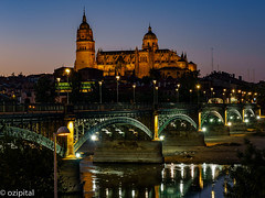 Salamanca Cathredral and the Steel Bridge (ozipital) Tags: europe salamanca cathedral bridge river rivertormes spain puente enrique estevan puentedeenriqueestevan