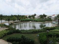 IMG_4560 (Man O' World) Tags: baha mar nassau bahamas beach turtle resort