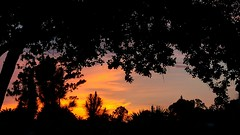 July Twilight at Sunset! (jlynfriend) Tags: phone photo lg sunset sky skyview skyscape landscape colors orange yellow pink blue violet clouds tree structures twilight dusk