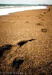 Cogden Beach-20 (broadswordcallingdannyboy) Tags: dorset cogdenbeach beach sea seascape waves fun holiday springsun jurassiccoast eos7d 1740mm canonl leonreillyphotography england southcoast donotcopy