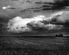 Summer Storms (CanonDLee) Tags: blackandwhite clouds country dynamic farm field goodhue mn minnesota rural storm weather