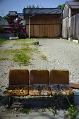 One scene in Ikuchijima Island,Hiroshima 2018/04 No.3. (HIDE@Verdad) Tags: russian sony α7ii a7ii jupiter12