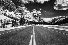 Alberta (petemenzies.com) Tags: alberta icefields parkway road mountains jasper rockies travel canada roadtrip landscape epic scenery highway blackandwhite monochrome bw mono cool cool2 cool3 cool4 uncool uncool2 uncool3 uncool5 cool5 cool6 cool7 cool8 iceboxcool c8u6