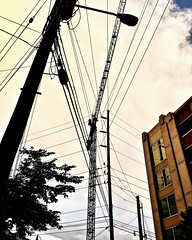 """It's Complicated"" (Halvorsong) Tags: street road roadside urban city streetphotography photography explore discover photosafari nashville musicrow america usa utility electricity electric wires building buildings composition complexity art sunset evening light shadow dusk downtown pattern patterns halvorsong linesandcurves lines linescurves geometry urbangeometry"