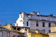 470 - Bastia au-dessus du Vieux Port (paspog) Tags: bastia corse france corsica mai may 2018 toits roofs decken façades facades fassaden vieuxport