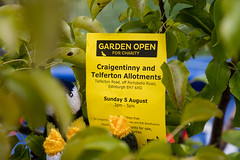 Scotland's Gardens Craigintinney Telferton July 2018 -23 (Philip Gillespie) Tags: edinburgh scotland craigentinny telferton portobello summer gardens park open plants fruit vegetables knitting insects animals trees people men women kids boys girls sky sun clouds colours green yellow blue white black red purple orange rainbow butterflies bees wasp honey pollen water canon 5dsr photography color path walk urban streets sheds plots flags bunting scotlands 2018 tyres bright colourful wet lady birds bugs signs houses